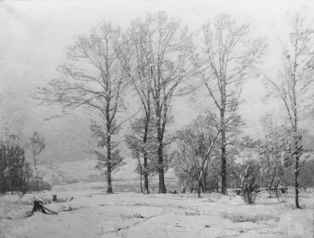 Trees under the falling snow